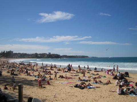 Manly Beach II