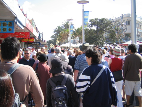 Manly crowds