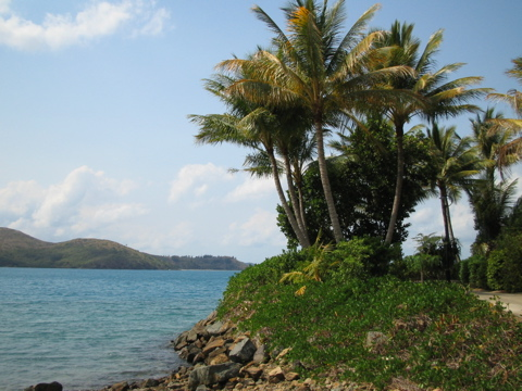Northern Daydream Island