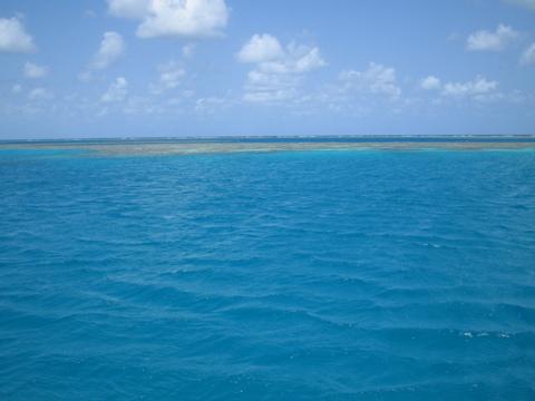 Landing at the Reef