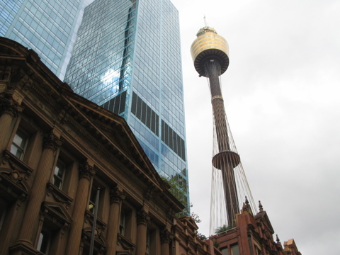 Sydney Tower in the bg
