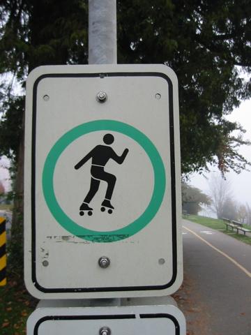 Disco skater